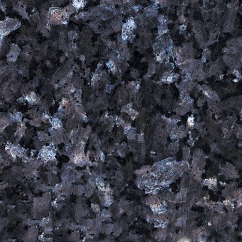 Labrador_Grey